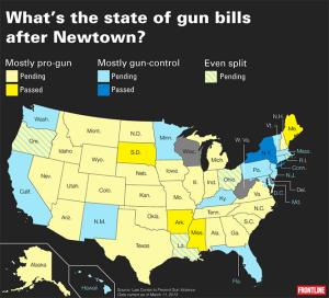 state-gunlaws
