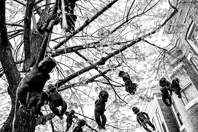 Black baby dolls hung from a tree as a symbol of protest of the death of 25 year old Freddie Gray in Baltimore, MD on April 28, 2015. (Photo/Andrew Renneisen)